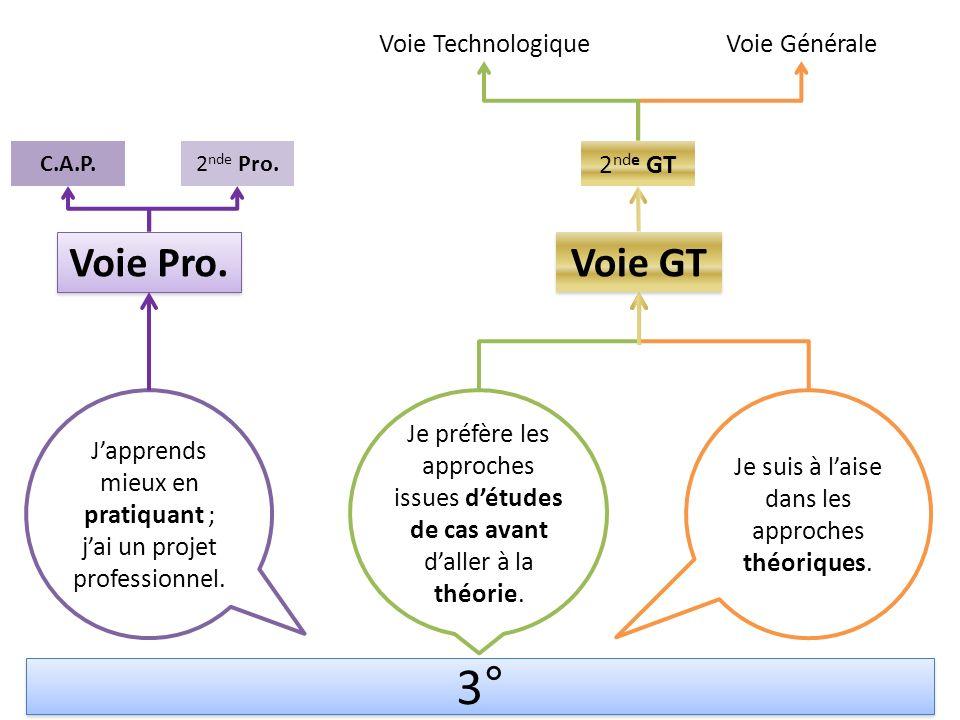 3° Voie GT Voie TechnologiqueVoie Générale Japprends mieux en pratiquant ; jai un projet professionnel.