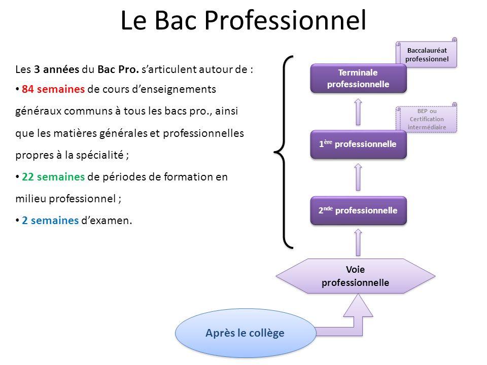 BEP ou Certification intermédiaire Baccalauréat professionnel Voie professionnelle Terminale professionnelle Après le collège 2 nde professionnelle 1 ère professionnelle Les 3 années du Bac Pro.