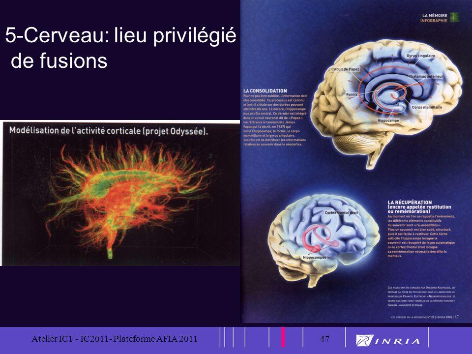 47 Atelier IC1 - IC2011- Plateforme AFIA 201147 5-Cerveau: lieu privilégié de fusions