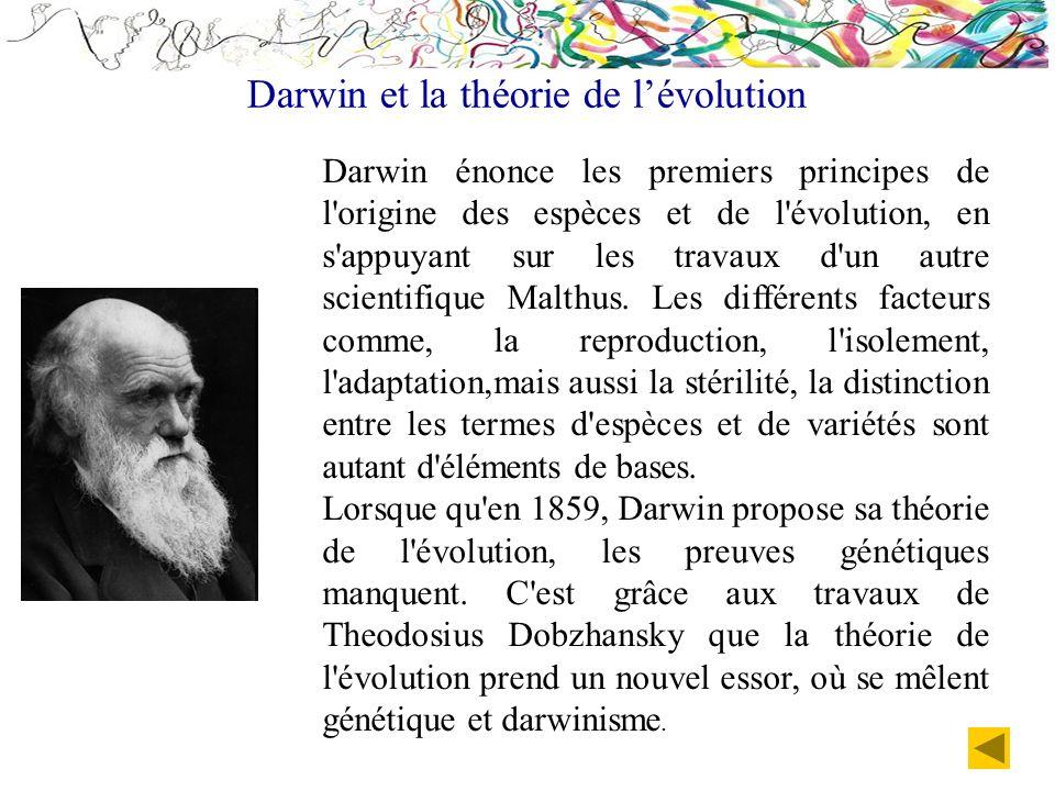 Darwin énonce les premiers principes de l'origine des espèces et de l'évolution, en s'appuyant sur les travaux d'un autre scientifique Malthus. Les di
