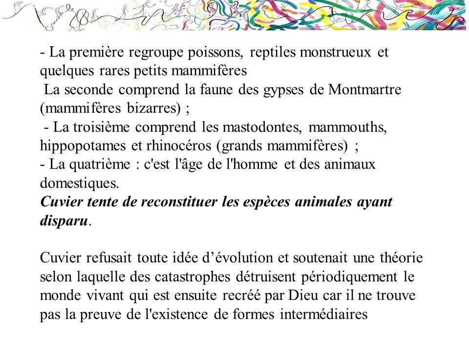 - La première regroupe poissons, reptiles monstrueux et quelques rares petits mammifères La seconde comprend la faune des gypses de Montmartre (mammif