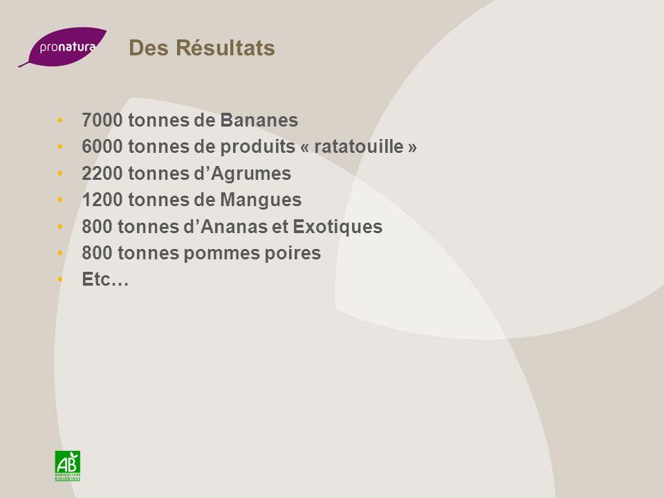 Des Résultats 7000 tonnes de Bananes 6000 tonnes de produits « ratatouille » 2200 tonnes dAgrumes 1200 tonnes de Mangues 800 tonnes dAnanas et Exotiqu