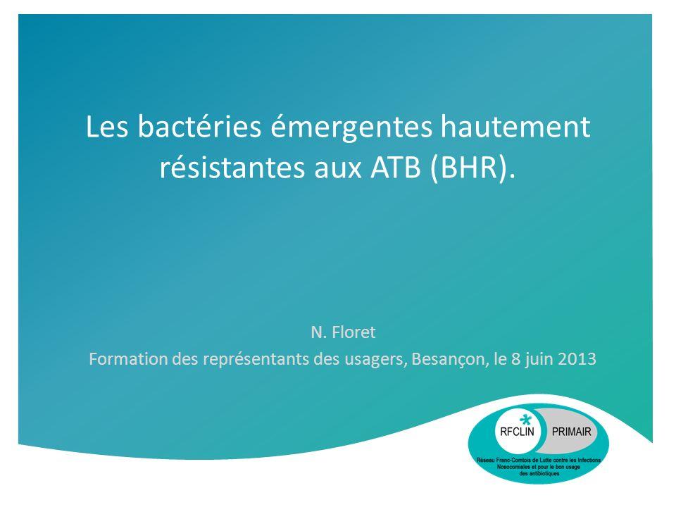Les bactéries émergentes hautement résistantes aux ATB (BHR). N. Floret Formation des représentants des usagers, Besançon, le 8 juin 2013