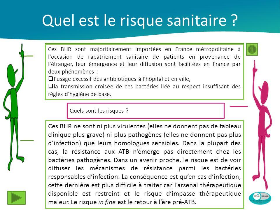 Quel est le risque sanitaire ? Ces BHR sont majoritairement importées en France métropolitaine à l'occasion de rapatriement sanitaire de patients en p