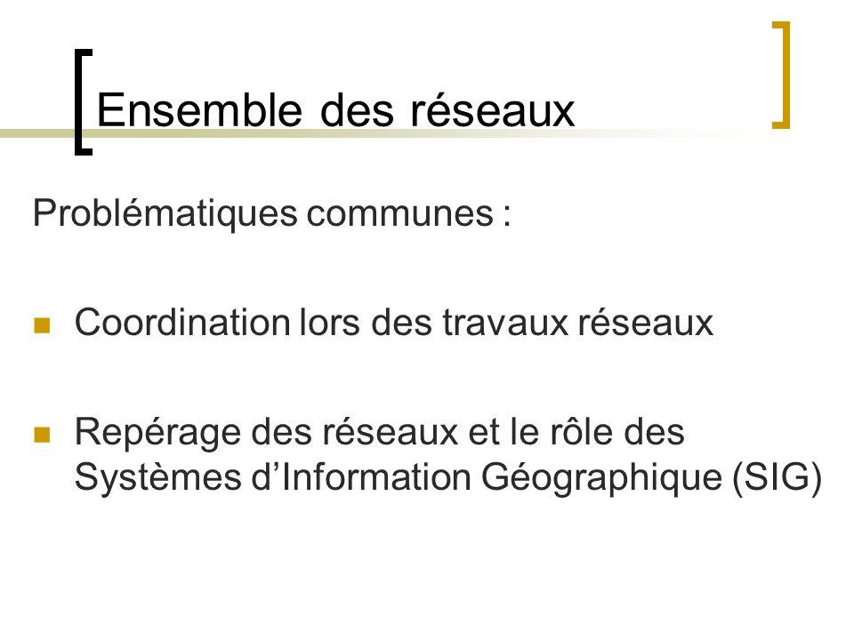 Ensemble des réseaux Problématiques communes : Coordination lors des travaux réseaux Repérage des réseaux et le rôle des Systèmes dInformation Géographique (SIG)
