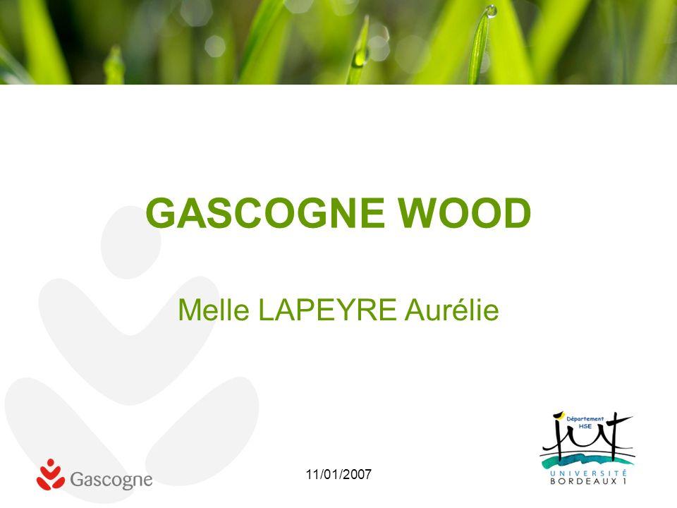 11/01/2007 GASCOGNE WOOD Melle LAPEYRE Aurélie