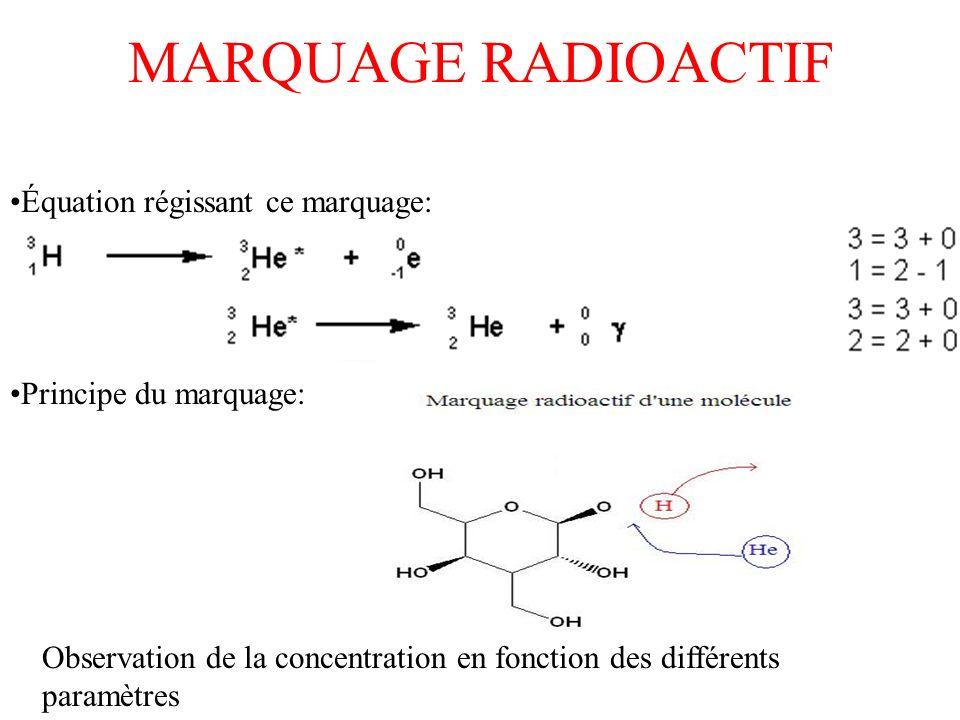 MARQUAGE RADIOACTIF Équation régissant ce marquage: Principe du marquage: Observation de la concentration en fonction des différents paramètres