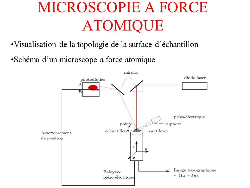 MICROSCOPIE A FORCE ATOMIQUE Visualisation de la topologie de la surface déchantillon Schéma dun microscope a force atomique