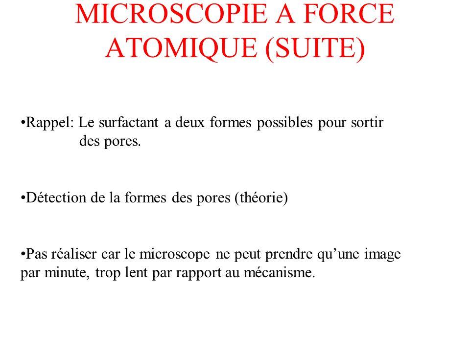 MICROSCOPIE A FORCE ATOMIQUE (SUITE) Rappel: Le surfactant a deux formes possibles pour sortir des pores. Détection de la formes des pores (théorie) P