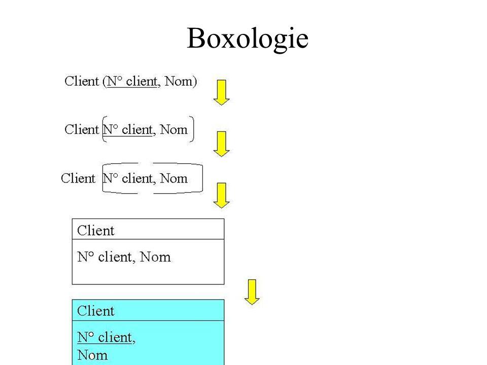 Boxologie