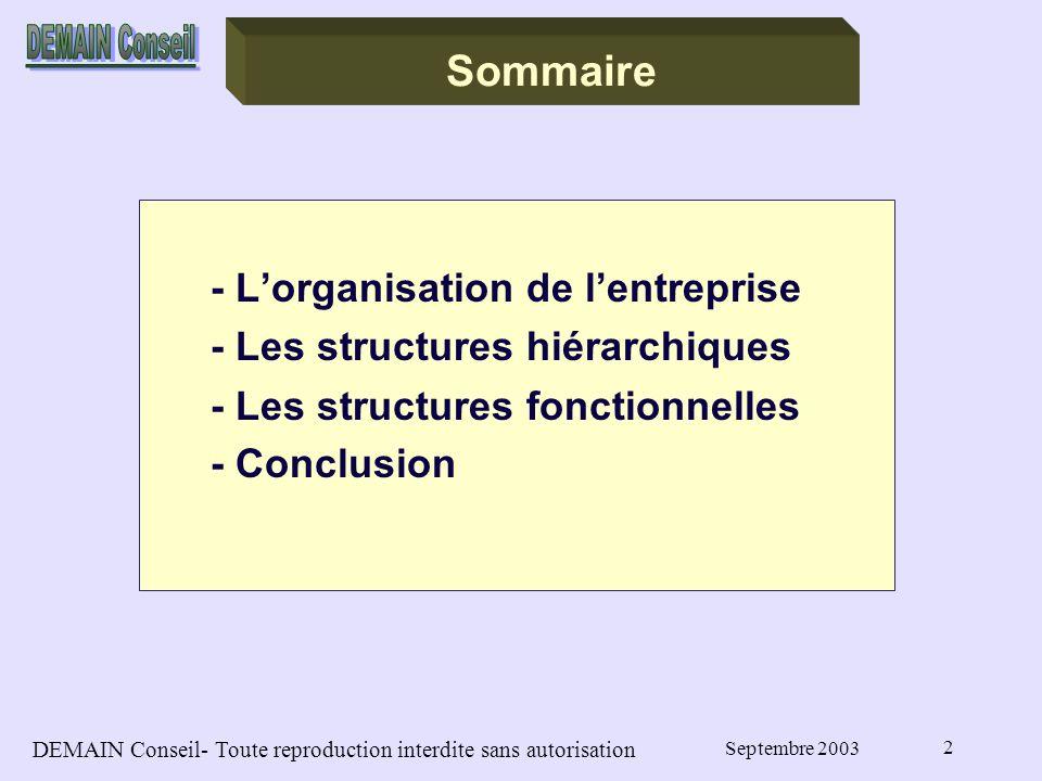 DEMAIN Conseil- Toute reproduction interdite sans autorisation Septembre 2003 2 Sommaire - Lorganisation de lentreprise - Les structures hiérarchiques - Les structures fonctionnelles - Conclusion