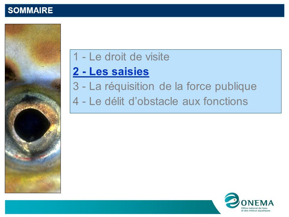 2 - Les saisies Pas de texte « police de leau » relatif à la saisie mais un droit de CONSULTATION Cependant, lart.