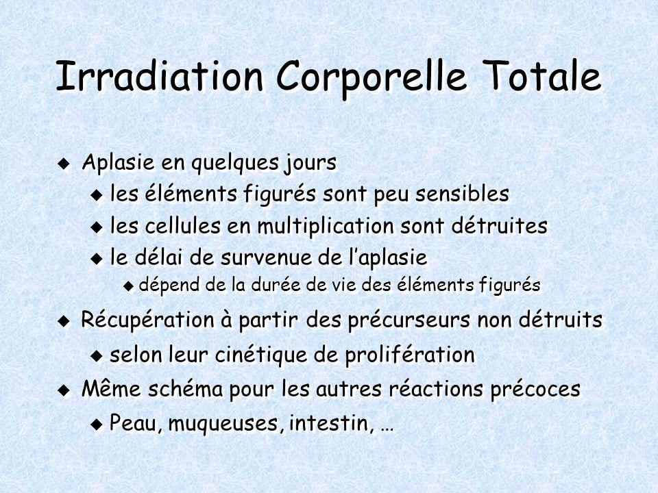 Irradiation Corporelle Totale Aplasie en quelques jours Aplasie en quelques jours u les éléments figurés sont peu sensibles u les cellules en multipli