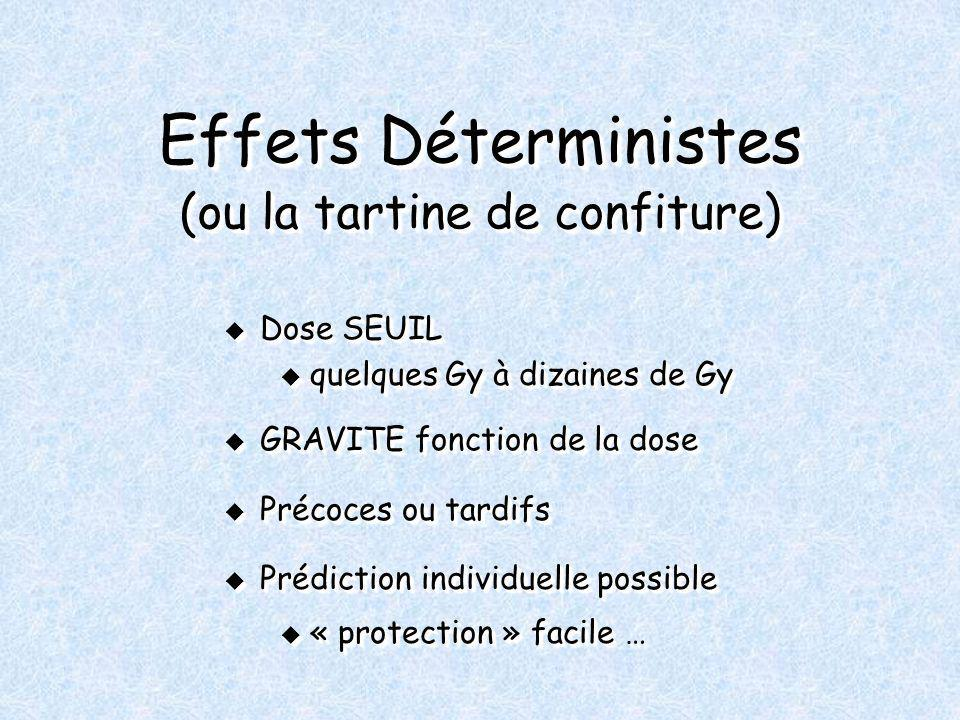 Effets Déterministes (ou la tartine de confiture) Dose SEUIL Dose SEUIL u quelques Gy à dizaines de Gy GRAVITE fonction de la dose GRAVITE fonction de la dose Précoces ou tardifs Précoces ou tardifs Prédiction individuelle possible Prédiction individuelle possible u « protection » facile … Dose SEUIL Dose SEUIL u quelques Gy à dizaines de Gy GRAVITE fonction de la dose GRAVITE fonction de la dose Précoces ou tardifs Précoces ou tardifs Prédiction individuelle possible Prédiction individuelle possible u « protection » facile …