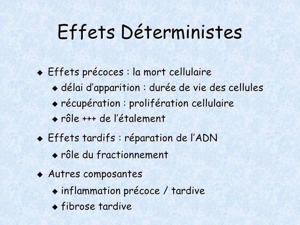 Effets Déterministes Effets précoces : la mort cellulaire Effets précoces : la mort cellulaire u délai dapparition : durée de vie des cellules u récup