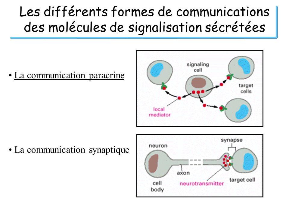 Les différents formes de communications des molécules de signalisation sécrétées La communication paracrine La communication synaptique