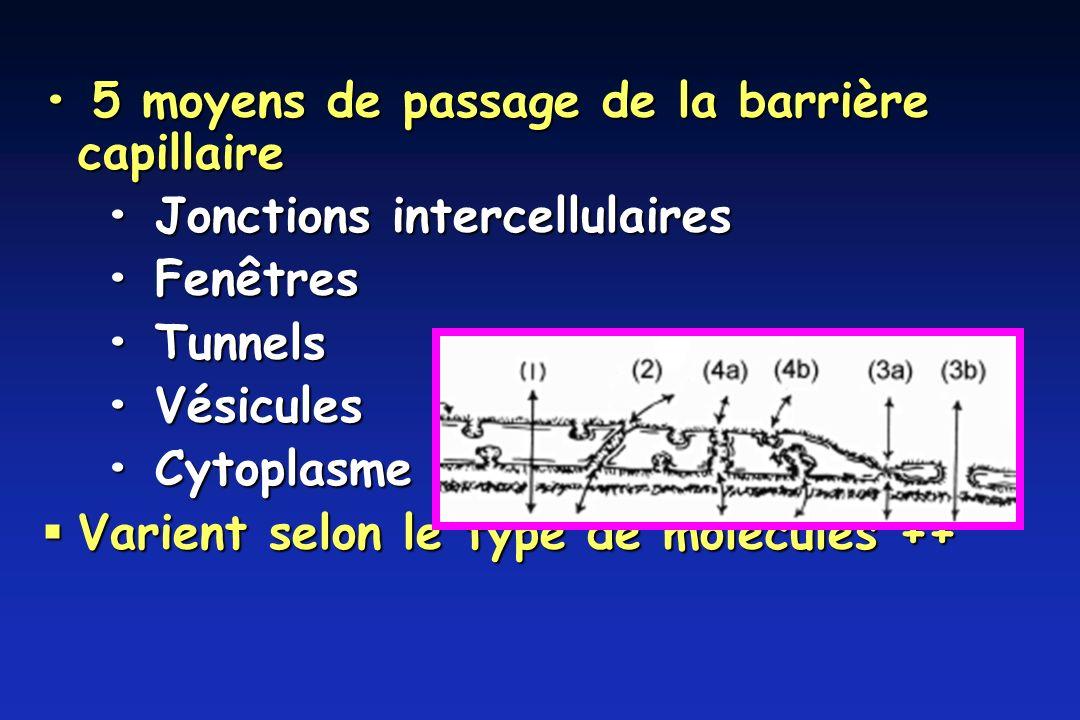 5 moyens de passage de la barrière capillaire 5 moyens de passage de la barrière capillaire Jonctions intercellulaires Jonctions intercellulaires Fenêtres Fenêtres Tunnels Tunnels Vésicules Vésicules Cytoplasme Cytoplasme Varient selon le type de molécules ++ Varient selon le type de molécules ++