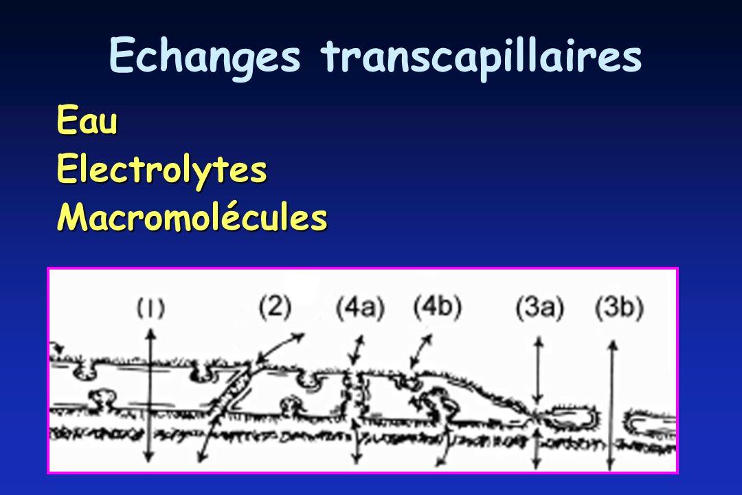 Echanges transcapillaires EauElectrolytesMacromolécules