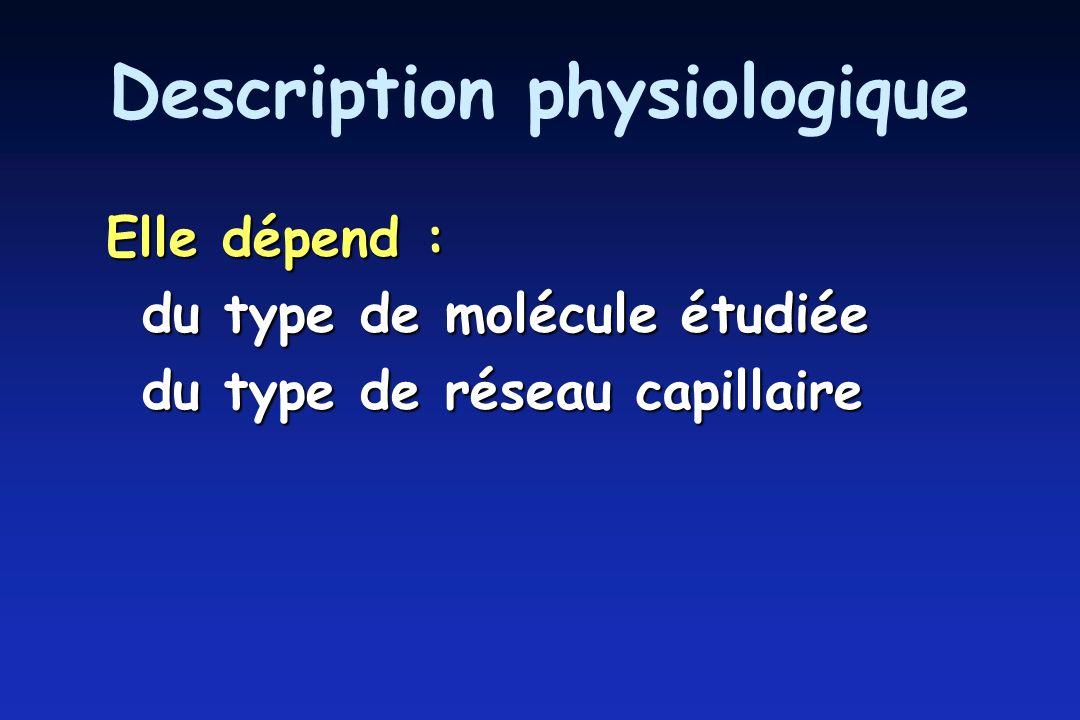 Description physiologique Elle dépend : du type de molécule étudiée du type de réseau capillaire