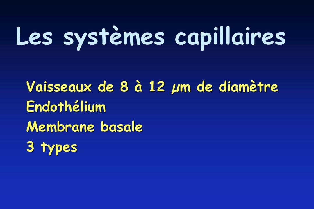 Les systèmes capillaires Vaisseaux de 8 à 12 µm de diamètre Endothélium Membrane basale 3 types