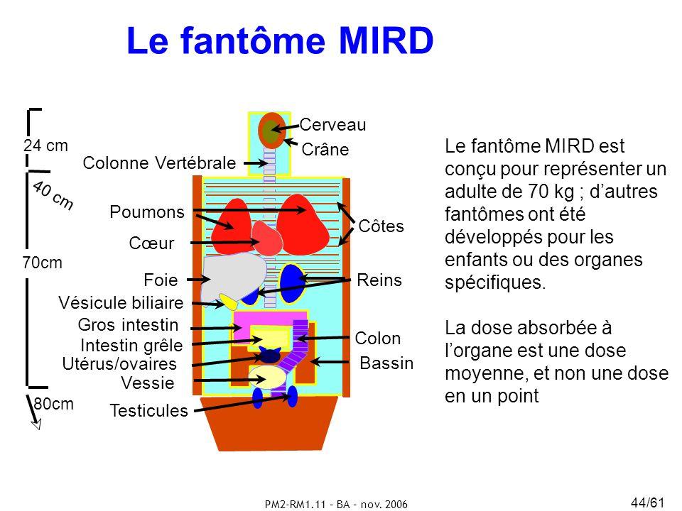 PM2-RM1.11 – BA – nov. 2006 44/61 Le fantôme MIRD Crâne Cerveau Cœur Colonne Vertébrale Côtes Poumons Foie Reins Vésicule biliaire Vessie Bassin Gros