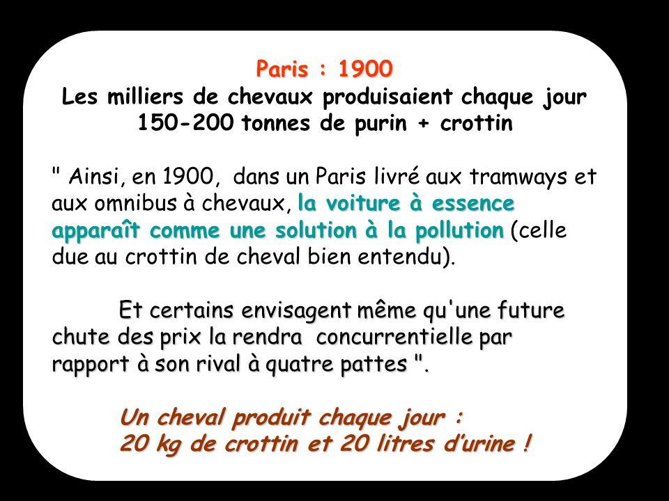 5 Paris : 1900 Les milliers de chevaux produisaient chaque jour 150-200 tonnes de purin + crottin la voiture à essence apparaît comme une solution à l