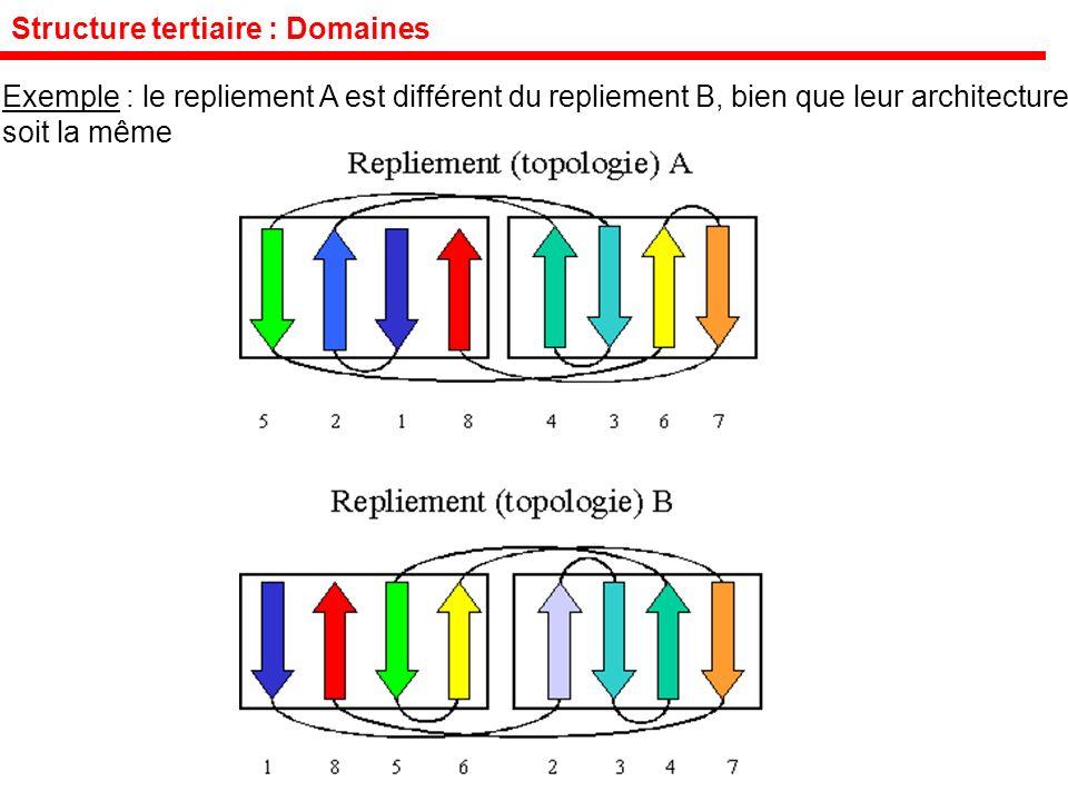 Exemple : le repliement A est différent du repliement B, bien que leur architecture soit la même