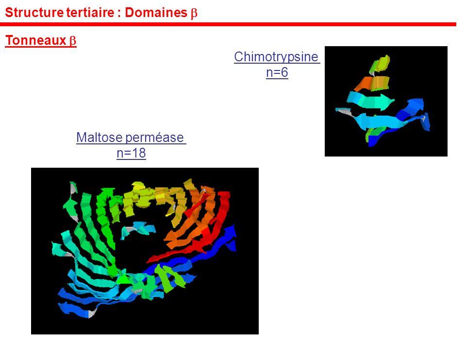 Structure tertiaire : Domaines Tonneaux Maltose perméase n=18 Chimotrypsine n=6