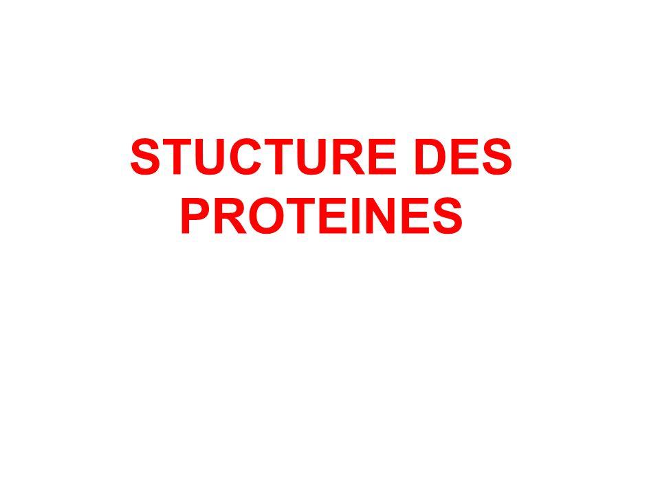 STUCTURE DES PROTEINES