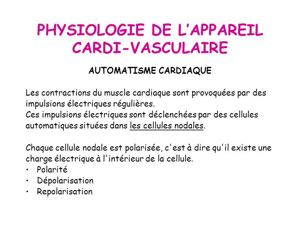 PHYSIOLOGIE DE LAPPAREIL CARDI-VASCULAIRE AUTOMATISME CARDIAQUE Les contractions du muscle cardiaque sont provoquées par des impulsions électriques régulières.
