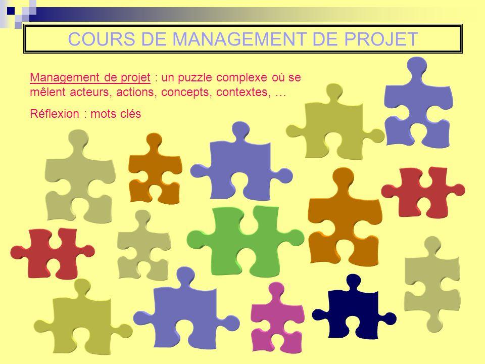 COURS DE MANAGEMENT DE PROJET Management de projet : un puzzle complexe où se mêlent acteurs, actions, concepts, contextes, … Réflexion : mots clés