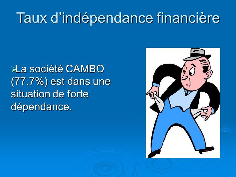 Taux dindépendance financière = Endettement Total Total Bilan Total Bilan= 20500 + 6000 28120 + 6000 =77.7% TOTAL DETTES Emprunts Etablissements de cr