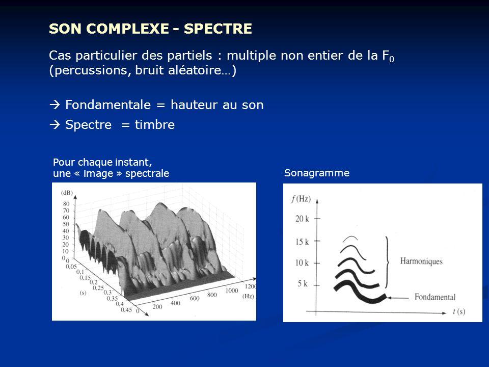 SON COMPLEXE - SPECTRE Cas particulier des partiels : multiple non entier de la F 0 (percussions, bruit aléatoire…) Fondamentale = hauteur au son Spec
