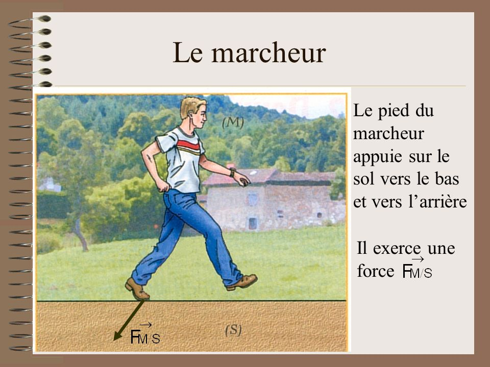 Le pied du marcheur appuie sur le sol vers le bas et vers larrière Il exerce une force