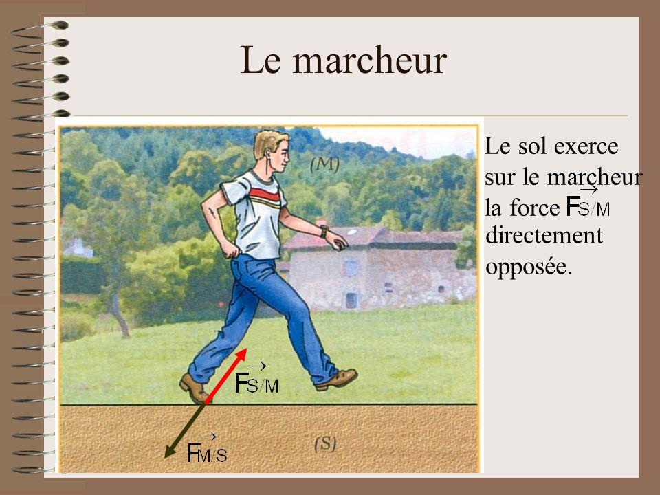 Le marcheur Le sol exerce sur le marcheur la force directement opposée.