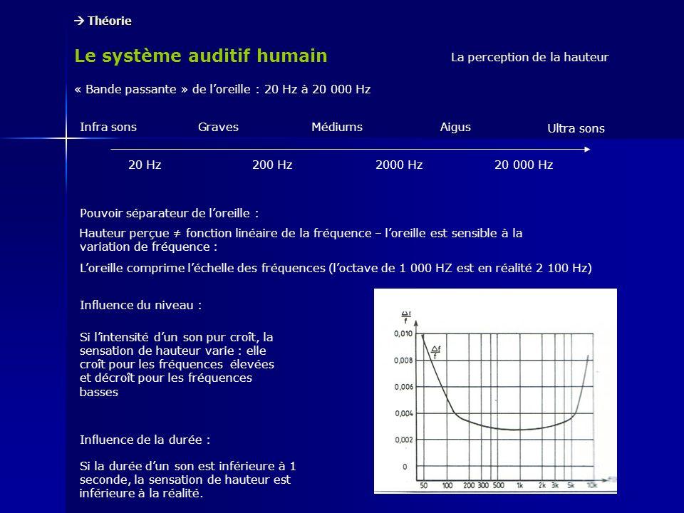 Le système auditif humain Théorie Théorie La perception de la hauteur « Bande passante » de loreille : 20 Hz à 20 000 Hz Infra sons Ultra sons GravesM