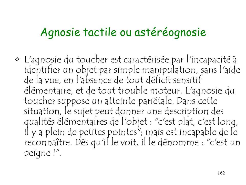 162 Agnosie tactile ou astéréognosie L'agnosie du toucher est caractérisée par l'incapacité à identifier un objet par simple manipulation, sans l'aide
