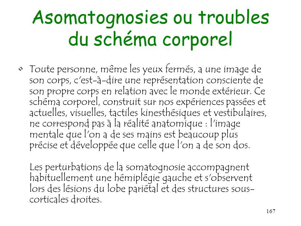 167 Asomatognosies ou troubles du schéma corporel Toute personne, même les yeux fermés, a une image de son corps, c'est-à-dire une représentation cons