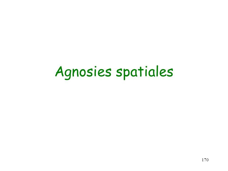 170 Agnosies spatiales
