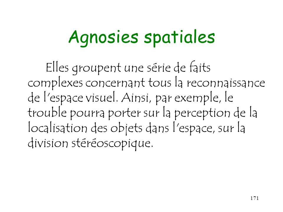 171 Agnosies spatiales Elles groupent une série de faits complexes concernant tous la reconnaissance de l'espace visuel. Ainsi, par exemple, le troubl