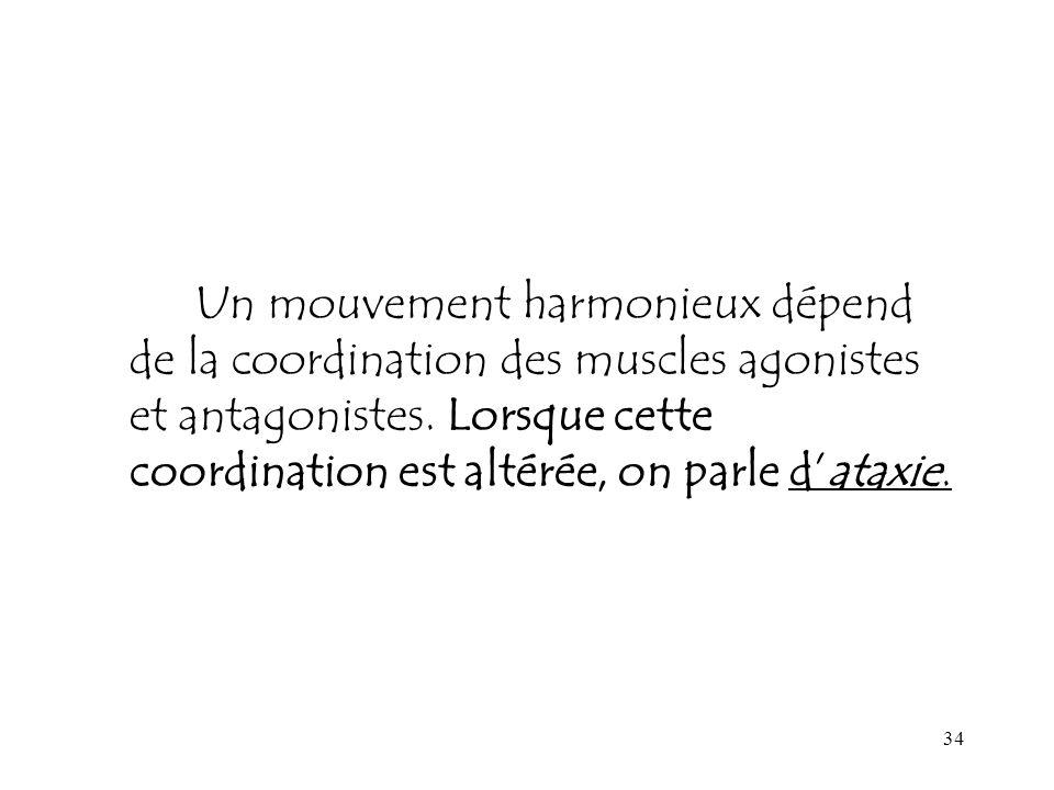 34 Un mouvement harmonieux dépend de la coordination des muscles agonistes et antagonistes. Lorsque cette coordination est altérée, on parle dataxie.