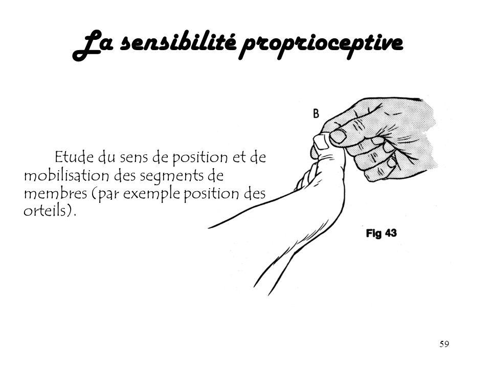 59 La sensibilité proprioceptive Etude du sens de position et de mobilisation des segments de membres (par exemple position des orteils).