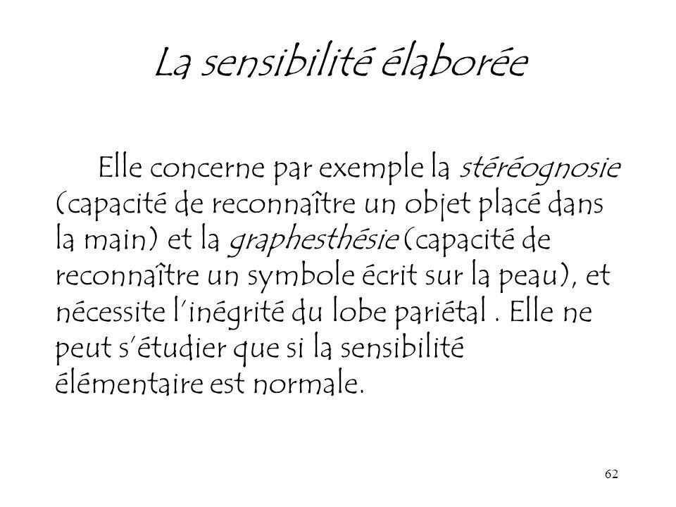 62 La sensibilité élaborée Elle concerne par exemple la stéréognosie (capacité de reconnaître un objet placé dans la main) et la graphesthésie (capaci
