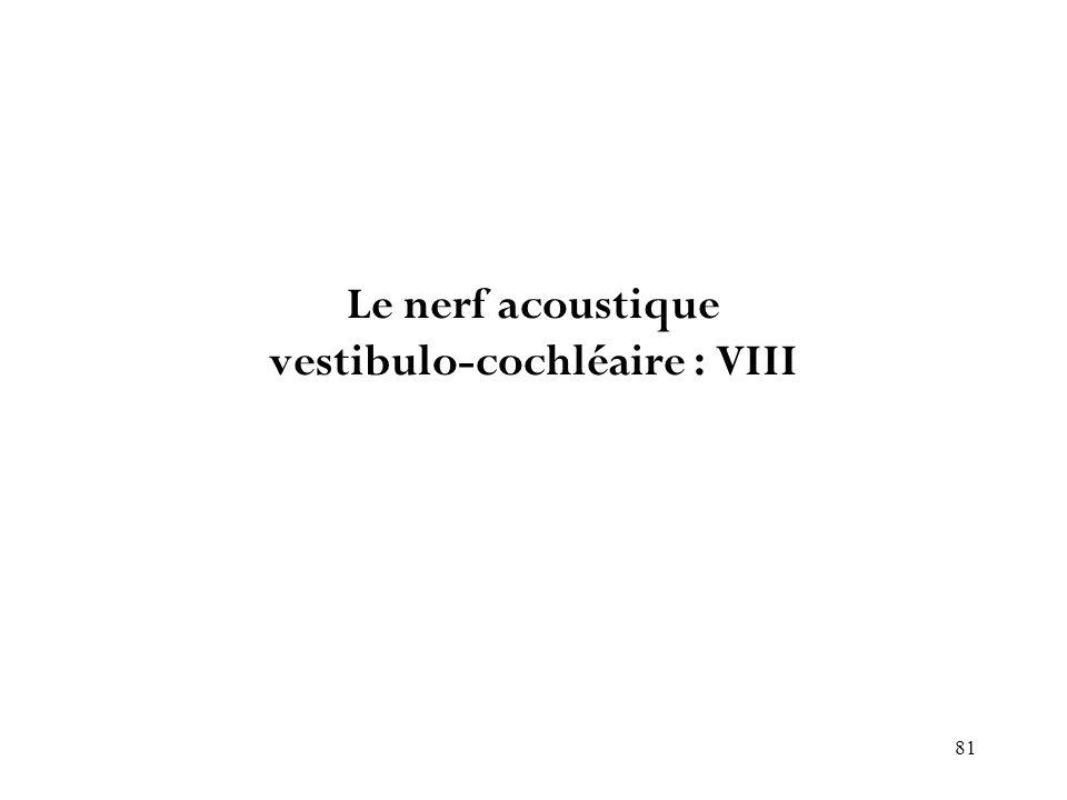 81 Le nerf acoustique vestibulo-cochléaire : VIII