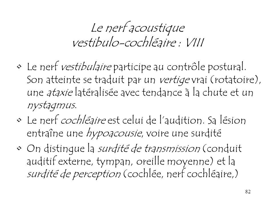 82 Le nerf acoustique vestibulo-cochléaire : VIII Le nerf vestibulaire participe au contrôle postural. Son atteinte se traduit par un vertige vrai (ro
