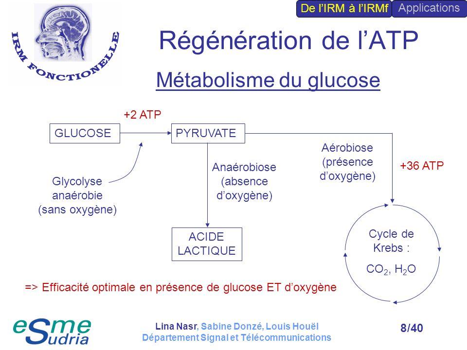 /408 Régénération de lATP Métabolisme du glucose GLUCOSEPYRUVATE Glycolyse anaérobie (sans oxygène) Anaérobiose (absence doxygène) +2 ATP ACIDE LACTIQ