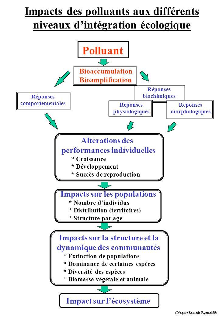 Impacts des polluants aux différents niveaux dintégration écologique Polluant Bioaccumulation Bioamplification Réponses comportementales Altérations d