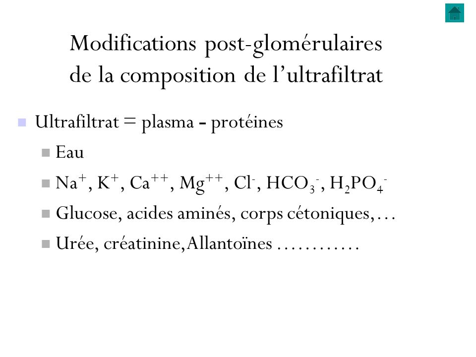 Modifications post-glomérulaires de la composition de lultrafiltrat Ultrafiltrat = plasma - protéines Eau Na +, K +, Ca ++, Mg ++, Cl -, HCO 3 -, H 2