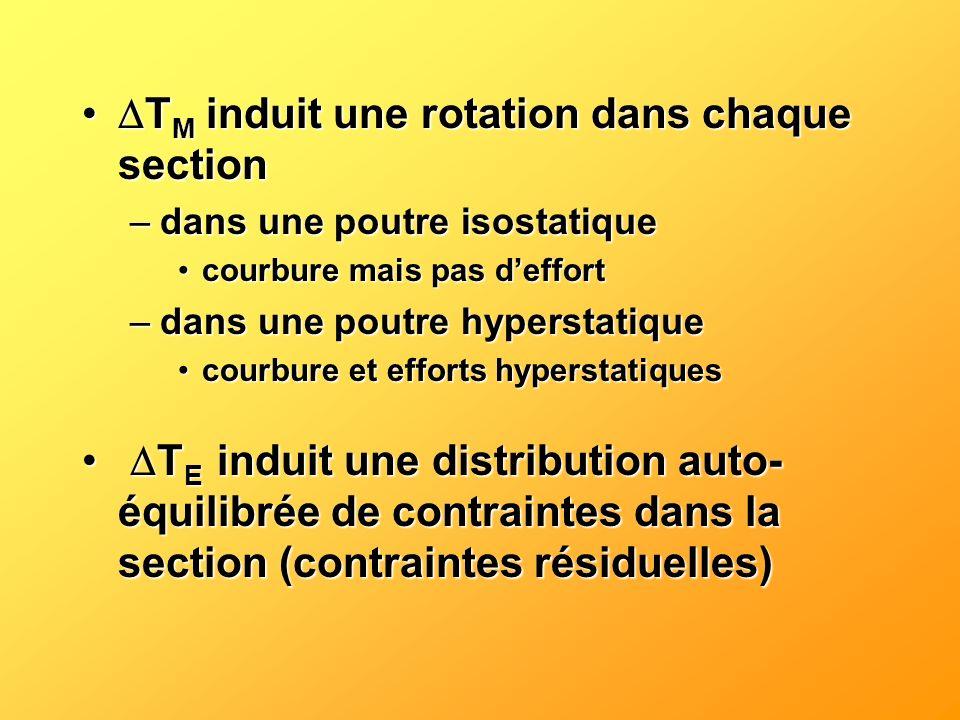 T M induit une rotation dans chaque section T M induit une rotation dans chaque section –dans une poutre isostatique courbure mais pas deffortcourbure
