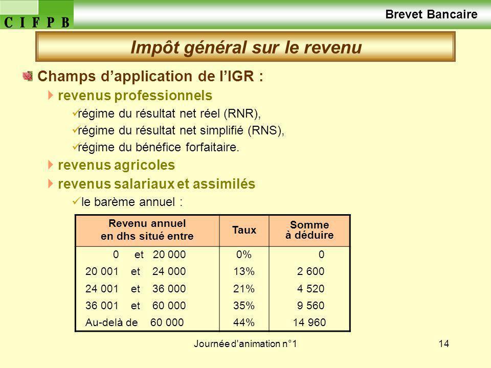 Journée d'animation n°114 Champs dapplication de lIGR : revenus professionnels régime du résultat net réel (RNR), régime du résultat net simplifié (RN